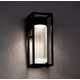 Structure Outdoor Wall Sconce - Black / Clear Seedy
