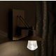 Suspense Outdoor Wall Sconce - Brushed Aluminum / Clear