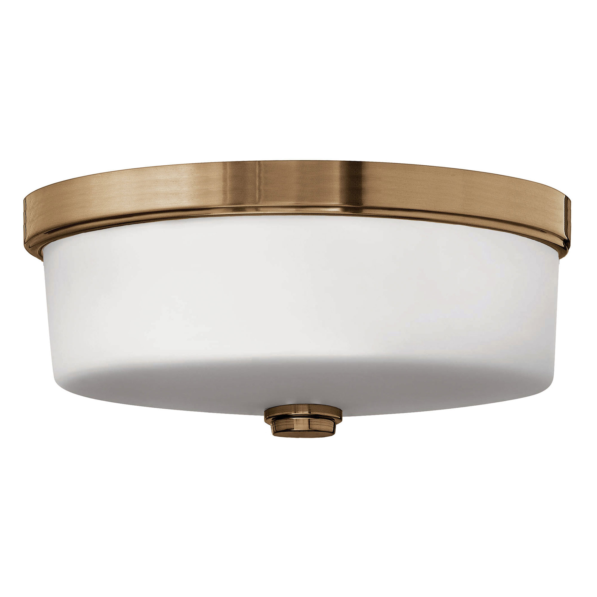 Signature bath 17 inch ceiling light fixture by hinkley lighting signature bath 17 inch ceiling light fixture by hinkley lighting 5421br aloadofball Gallery