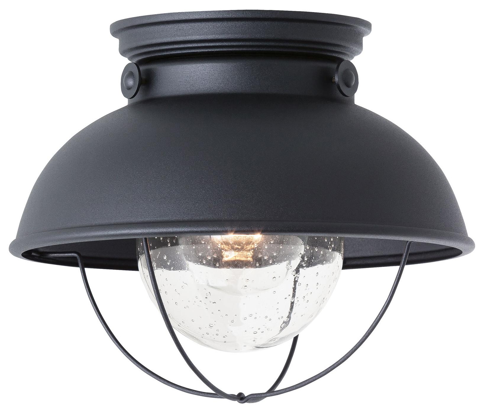 Sebring Ceiling Light Fixture By Sea Gull Lighting 8869 12