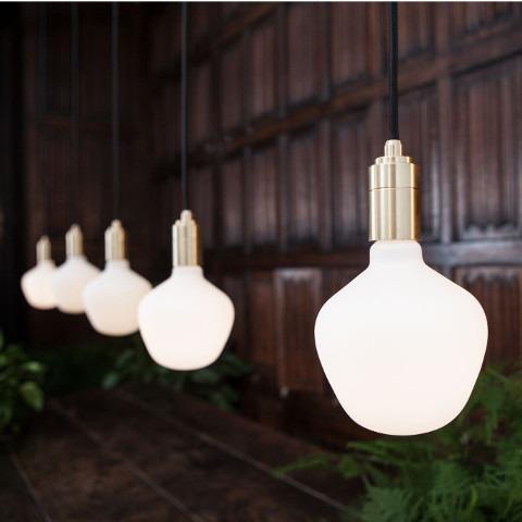 Feature Bulbs by Tala