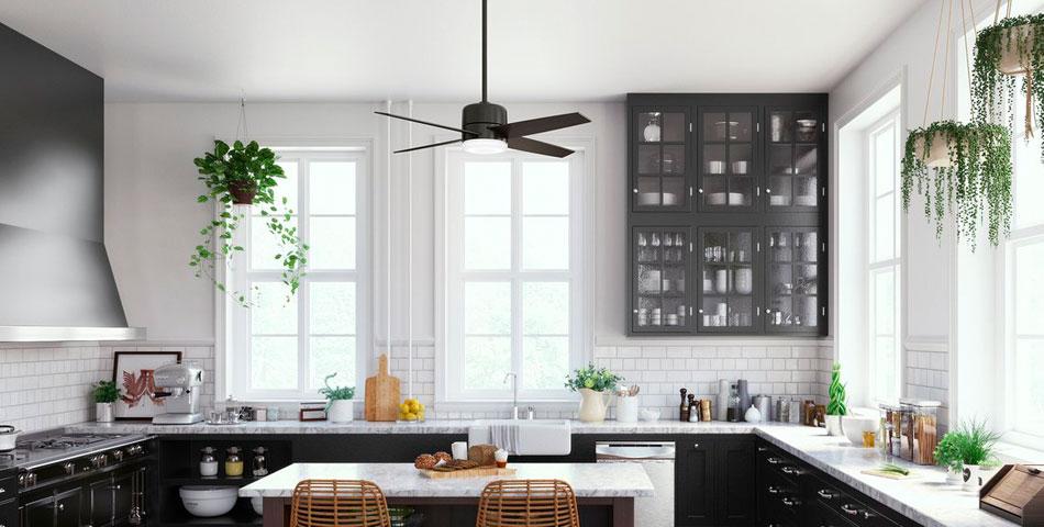 Modern Black Ceiling Fans